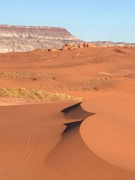 A majestic desert sand dune in Utah, Carmel has visited and written about.