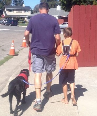 service dog tethered for autism