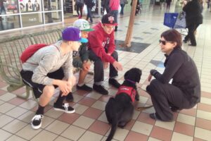 A woman makes time to explain service dog etiquette to some teens in a mall.